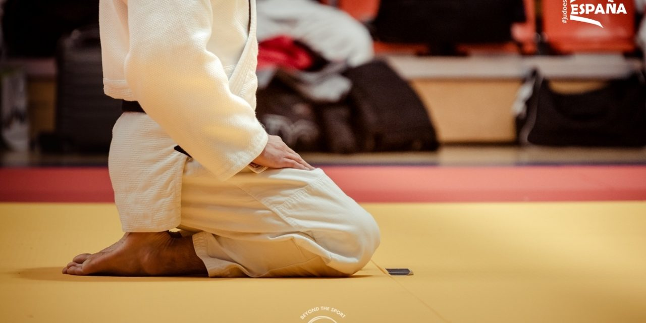 Lo bueno del Judo