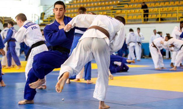 Los contenidos de las sesiones de Judo